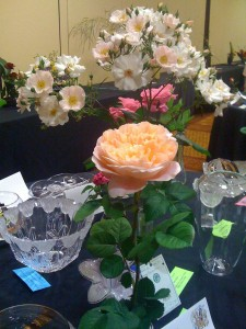 2010 Rose Show trophy table