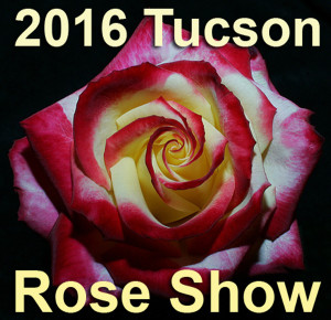 2016 Tucson Rose Show Photo Web Site