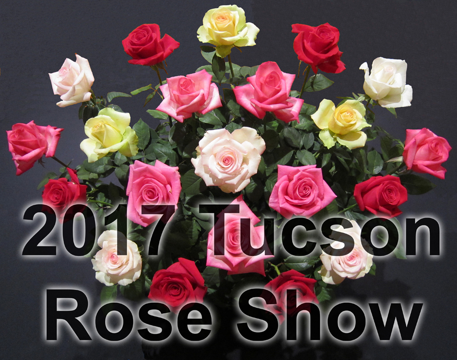2017 Tucson Rose Show Graphic